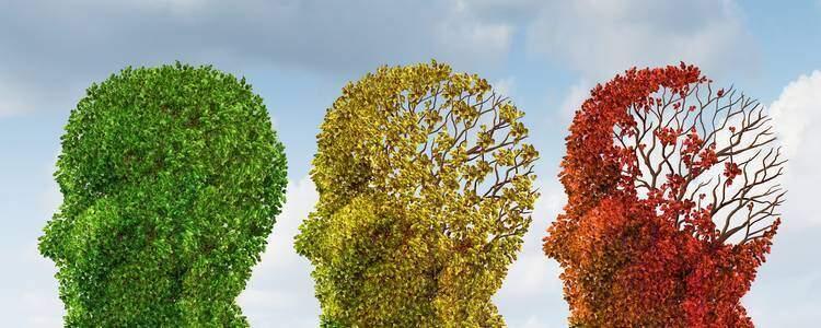 Altzheimer, dementie en magnesium.degeneratie van hersenen